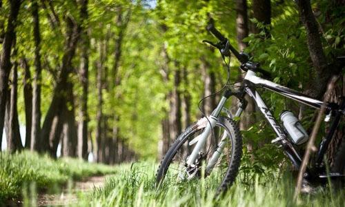 bike - Вело прогулянки